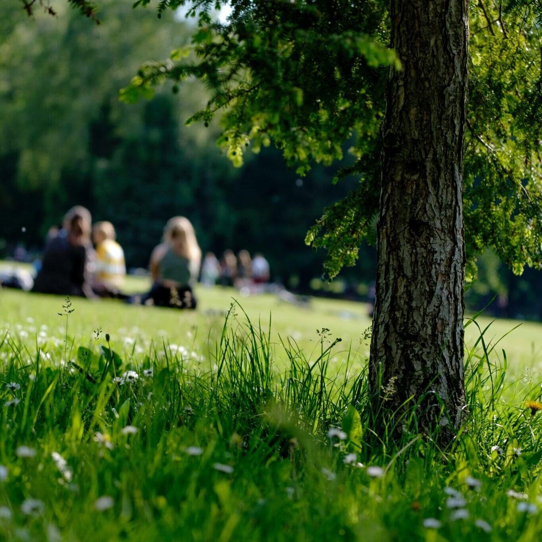 Hors Champ - Un jardin dans la ville